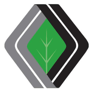 Diamond Achievement logo_